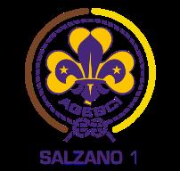agesci-scout-salzano1
